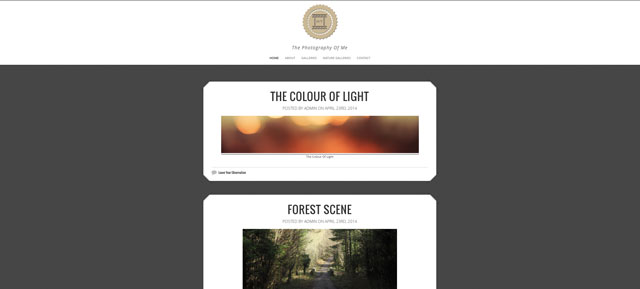 Website Design For A Photographers Website.